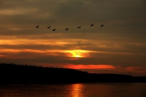 sunset-783727_640