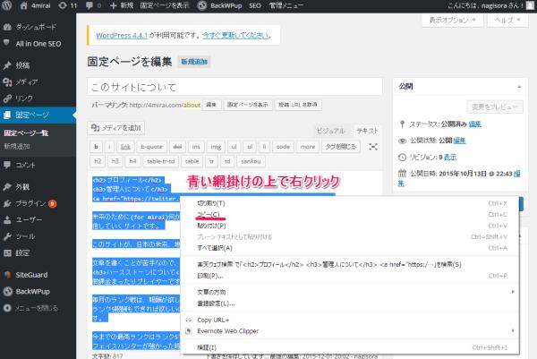 wordpress-dont-press-update-button-05