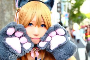りょむさん@猫耳メイド3